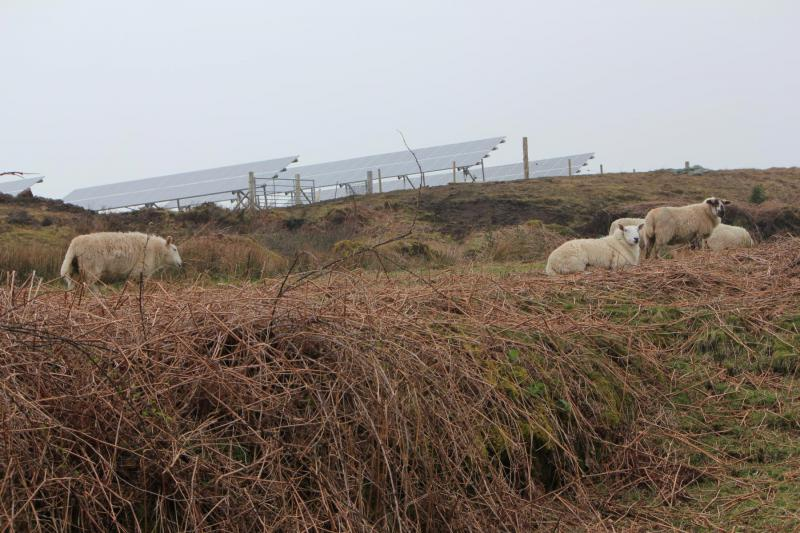 Isle of Eigg PV panels